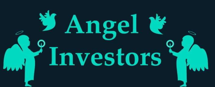 Angel Investors [Infographic]